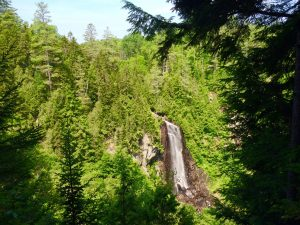 OK Slip Falls surrounded by beautiful trees